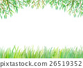 水彩画 植物 植物学 26519352