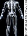 anatomy 26522788