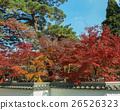 Autumn colors 26526323