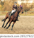 Sportswoman riding horse on equestrian competition 26527922