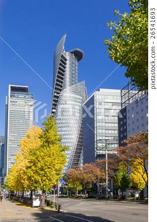 나고야시 나카무라 구 메이 에키 도시 풍경 나고야 역 메이 에키 통의 은행 가로수 26541693