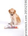 Animal companion and me  26542596
