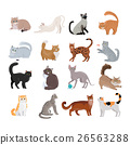 Set of Icons with Cats. Flat Design Vector. 26563288