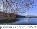 富士山 山 开花 26566576