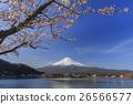 富士山 山 开花 26566577