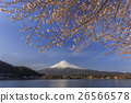 富士山 山 开花 26566578