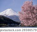 富士山 山 开花 26566579