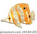 魚圖 26580189