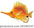 魚圖 26580207