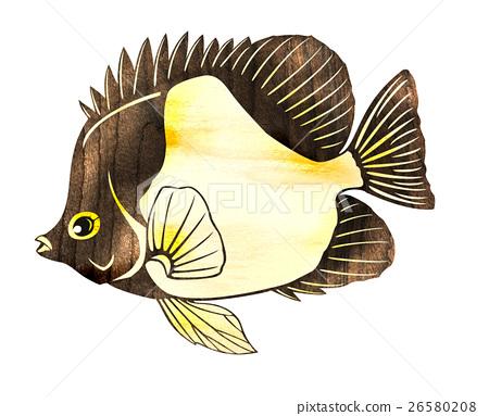 물고기 일러스트 26580208