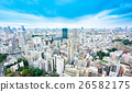 Panoramic city bird eye view in Tokyo, Japan  26582175