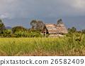 hut, madagascar, landscape 26582409