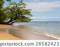 馬達加斯加 海灘 自然 26582423
