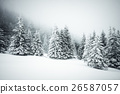 Christmas background with snowy fir trees 26587057