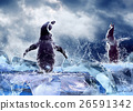 Animal stock images 26591342
