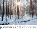 Morning winter mountain landscape with trees on 26595142