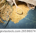 Spike of rice and brown rice 26596074