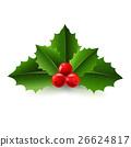 Xmas Holly Berry 26624817