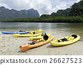 kayaks on the beach with mangrove forest 26627523