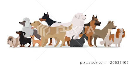 Group of Different Breeds Dogs. 26632403
