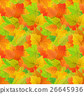 Cute autumn leaves from different kind of trees 26645936