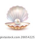 外殼 殼 圖像 26654225