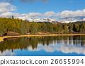 beautiful colorado forest 26655994