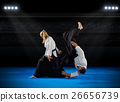 Martial arts fighters 26656739