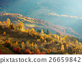 Autumn in the Carpathian mountains 26659842