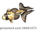 魚例證例證 26661473