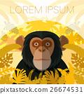 Chimpanzee on the Jungle Background 26674531