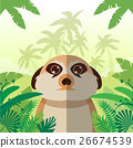 Meerkat on the Jungle Background 26674539