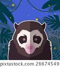 animal, bear, vector 26674549