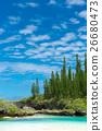 Pischenne Naturre (นิวแคลิโดเนีย Ile des Pins) 26680473