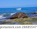 turtle, sea turtle, laniakea beach 26685547