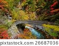 红叶与桥 26687036