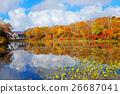 景观 景色 风景 26687041