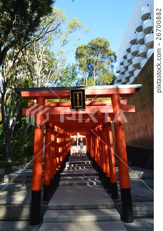 稻荷神社的紅色鳥居(兵庫縣神戶市生田神社神社/中央區) 26700882