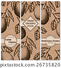 Natural organic tropical fruits vertical banners 26735820