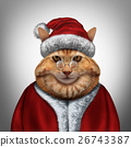 Christmas Cat 26743387