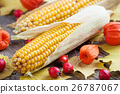 Two corns, hawthorn and dog rose berries. 26787067