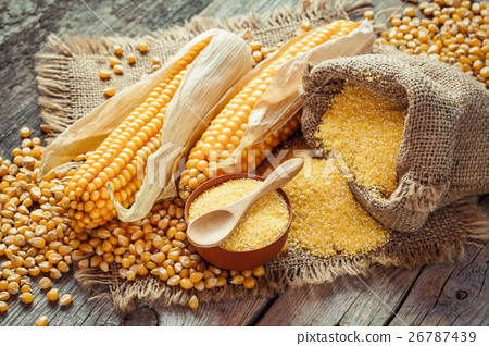 Corn groats and seeds, corncobs on table. 26787439