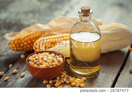 Corn essential oil bottle, seeds and corncobs 26787477