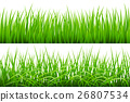 2 Backgrounds Of Green Grass, Isolated On White 26807534