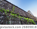 벽, 쾌청, 잎 26809818
