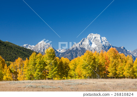 Autumn in the Tetons 26810824