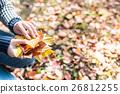秋天 秋 落葉 26812255