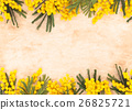 Border of mimosa flowers. 26825721