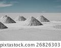Drying Hand-shoveled Salt Piles on Salar de Yuni 26826303