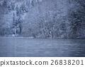 ฤดูหนาว,ต้นไม้มีหิมะเกาะ,ฉากหิมะ 26838201